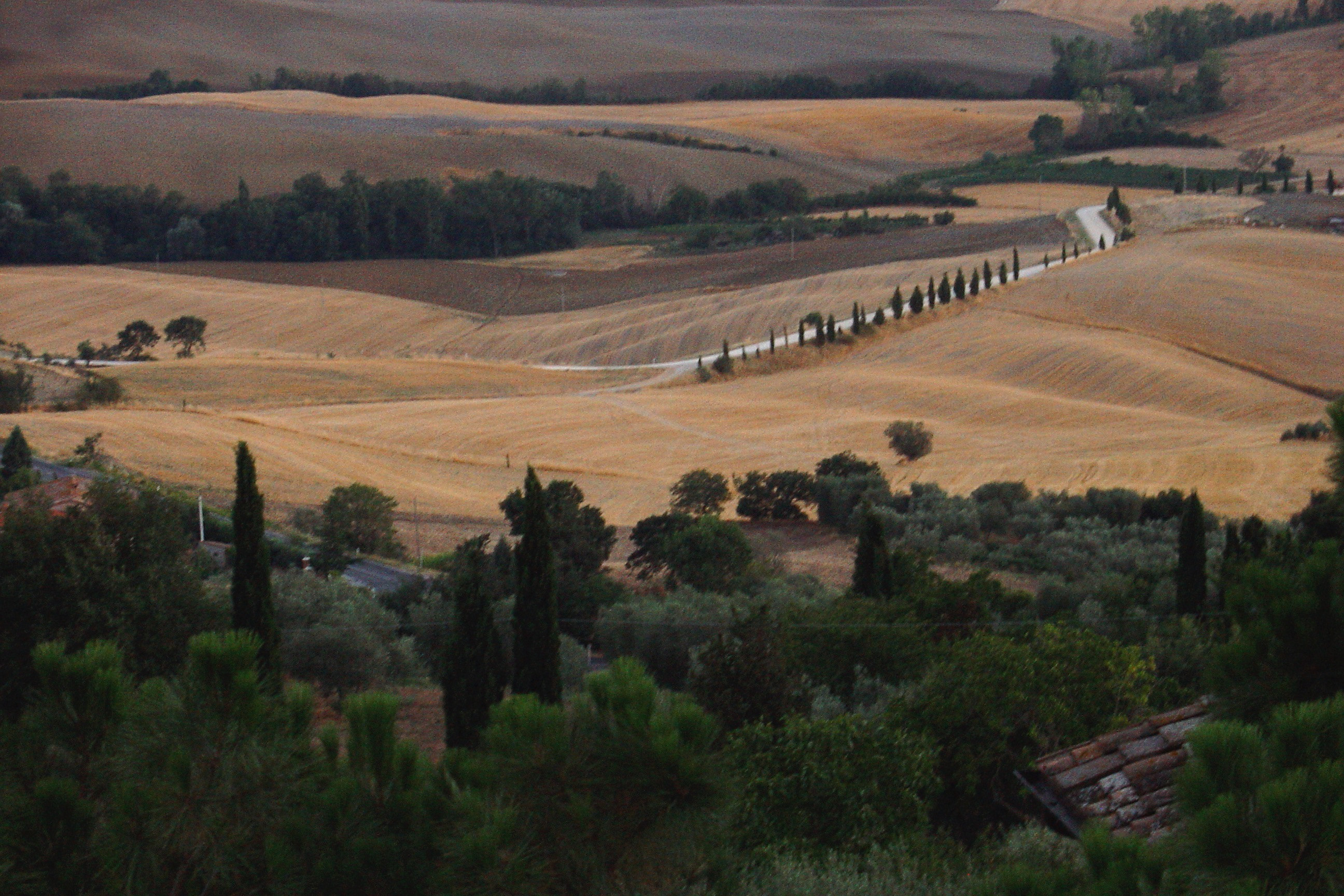 Cultural Landscapes: Val d'Orcia, Casentino Valley, Villas and Gardens